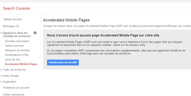 AMP dans la Search Console