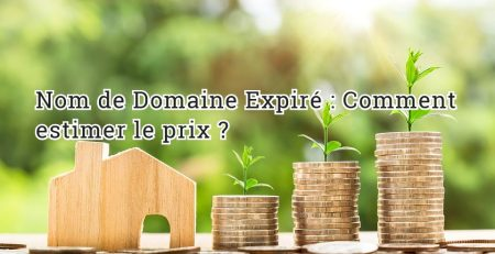 Nom de Domaine Expiré: Comment estimer le prix ?